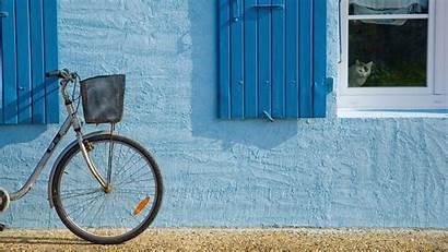 Window Bicycle Wallpapers Cat Bike Desktop Unique