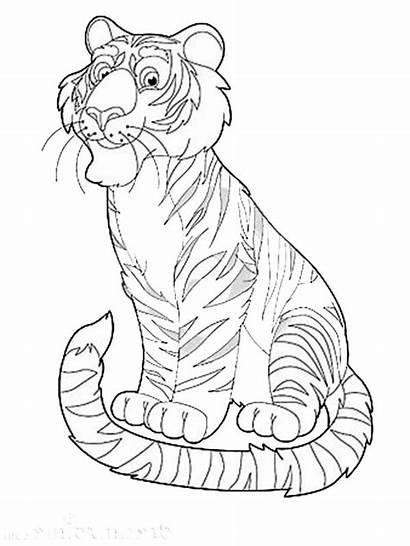 Coloring Animal Exotic Tiger Safari Happy Sheets