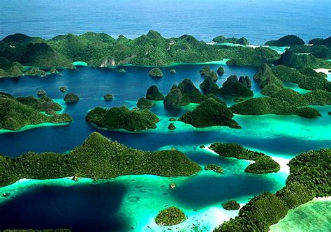 Raja Ampat, Papua: The Amazon of the Oceans | Indonesia'd