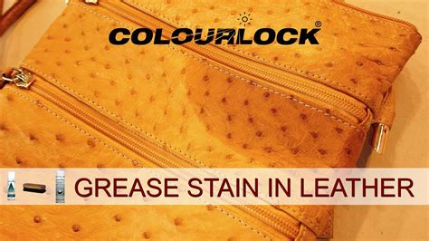 Grease Stains On Leather Carpet Cleaning Plano Il Tai Ping Carpets International Limited Annual Report 2016 Best Vacuum Cleaners For Canada Queenstown Tasmania Cleaner Pet Stains And Odor Bat Para Borrar Carpetas Por Fecha Carpete De Madeira Preco Instalado Bronx Ny