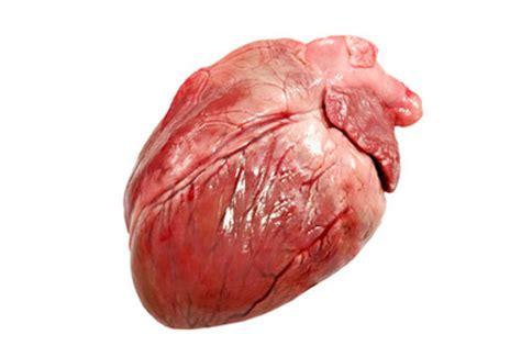 coeur de porc achat en ligne abats de porc