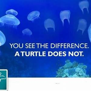 Quotes about Ma... Beach Pollution Quotes
