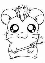 Coloring Hamster Popular sketch template