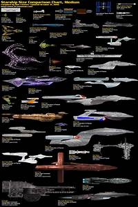 Star Scale Comparison (page 3) - Pics about space
