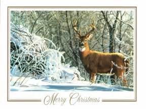 snow deer christmas cards