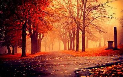 Scenery Wallpapers Autumn