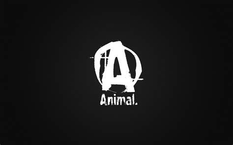 Animal Bodybuilding Wallpaper - animal pak wallpapers bodybuilding forums