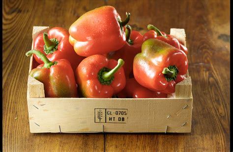 sweet pepper recipes relish