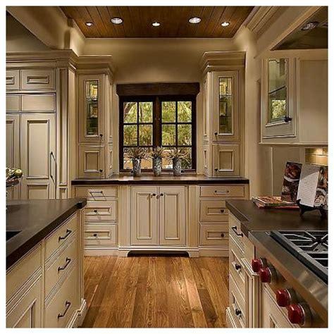 Dark Wood Flooring Dark Kitchen Cabinets Shining Home Design