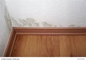 Luftfeuchtigkeit In Der Wohnung : schimmel in der wohnung ursachen und bek mpfung ~ Lizthompson.info Haus und Dekorationen