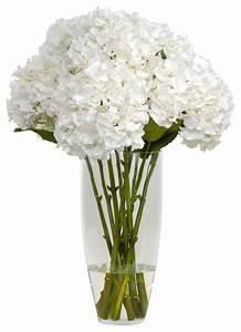 Vases Design Ideas: White Flower Vase Perfect Ideas Large ...