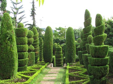 Topiary :  Nen Gallery