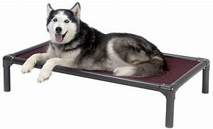 7 indestructible dog beds for chew tastic dogs the dog With chew proof dog cot