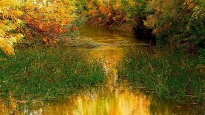 Peaceful River Autumn Nature During Wallpapers