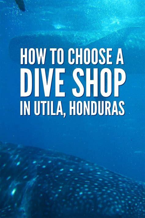 Best Dive Shop by Best 25 Dive Shop Ideas On Scuba Dive Shop