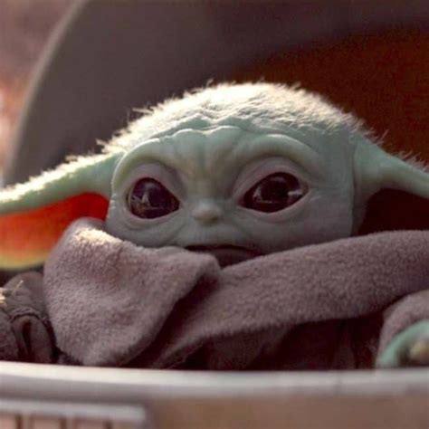 Pin By Nancy Anderson On Baby Yoda In 2020 Yoda Pictures