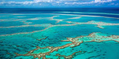 Warm waters continue to bleach the Great Barrier Reef