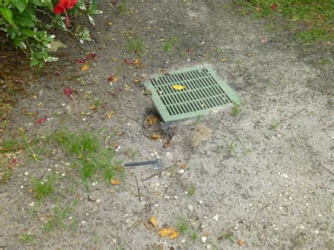 Catch Basin In Backyard by 17 Best Images About Yard Drainage On Yard