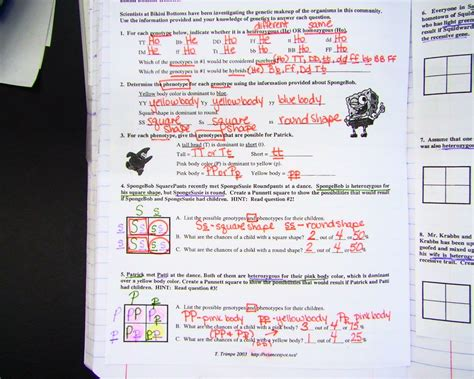 spongebob genetics worksheet answers free worksheets
