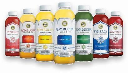 Kombucha Gt Flavors Brands Synergy Gts Dave