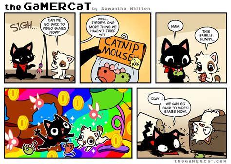 gamer cat images  pinterest gamer cat