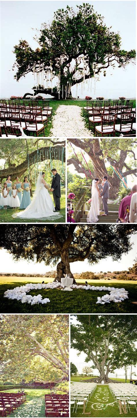 ceremonie en plein air mariage sous  arbre