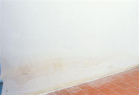 humidité mur intérieur chambre humidite mur interieur traitement 28 images produit de