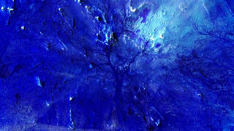 In Blau by Yves Klein Blue Fencebeating