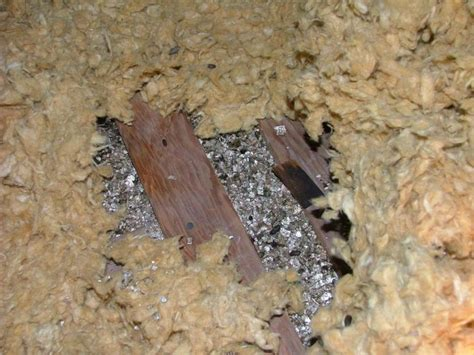 asbestos abatement limited dartmouth ns  pettipas