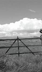 Rusty Gate Farm bw Donegal Photograph by Eddie Barron