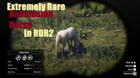 andalusian rdr2 perlino location coat