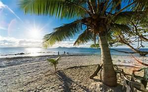 Nature, Landscape, Palm Trees, Beach, Sand, Sea, Sunlight ...