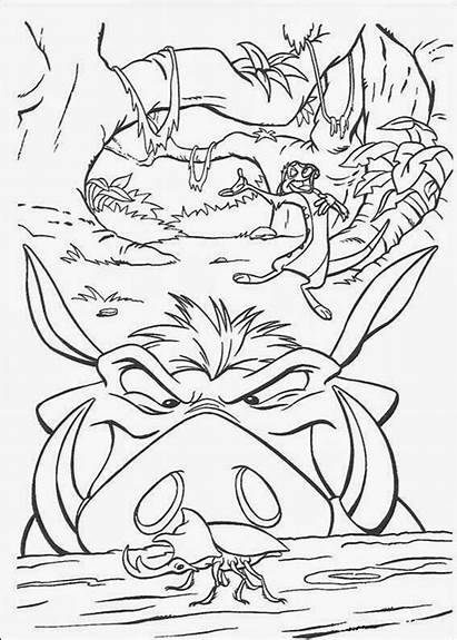 Lion Coloring King Simba Pride Pages Disney