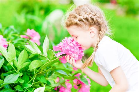 The five senses in French: nursery rhyme   A French Start