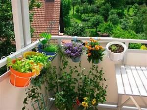 balkonpflanzen balkon gestalten urban gardening With markise balkon mit tapete obst