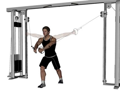pec deck flyes cable crossovers standing cable crossover health exercise and diet