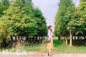 不修圖也能直接上傳 台南落羽松秘境壯觀必拍 - MOOK景點家 - 墨刻出版 華文最大旅遊資訊平台