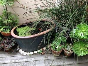 Plante Pour Bassin Extérieur : mini bassin pour rafra chir le balcon en 26 id es ~ Premium-room.com Idées de Décoration
