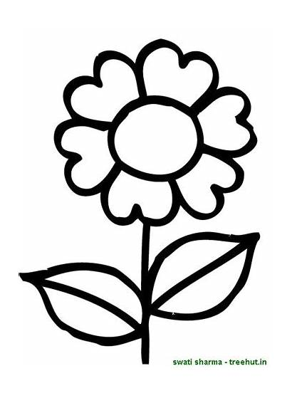 Flower Coloring Simple Pages Clipart Basic Flowers