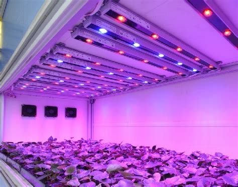 used led grow lights commonly used led lighting sources for grow lights led