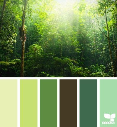 forest color 25 best ideas about color palette green on
