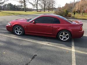 Used 2003 mustang cobra terminator 49k rare fast supercharged for sale