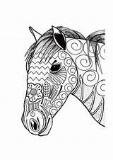 Coloring Horse Adult Ornamental Head sketch template