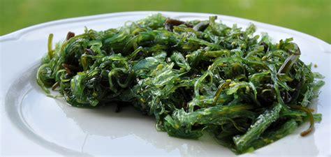 cuisiner algues comment cuisiner les algues luximer le de la