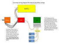 Common Wiring Diagram For Brushless Setup