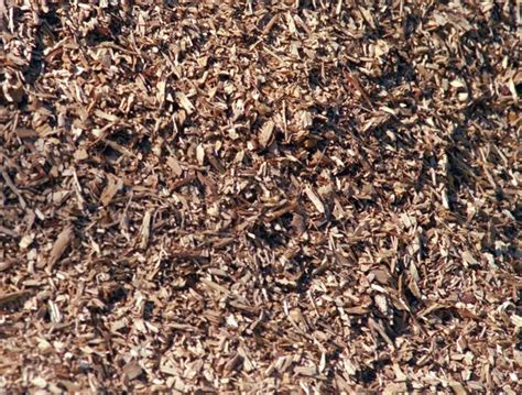 wood chip mulch what mulch is good mulch for your garden london community resource centre