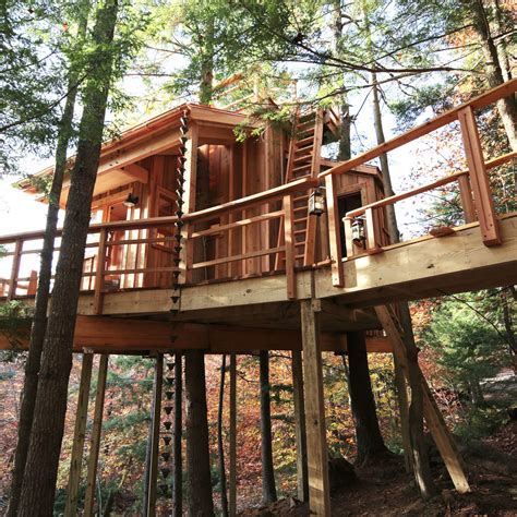 treehouse masters pictures  pin  pinterest pinsdaddy
