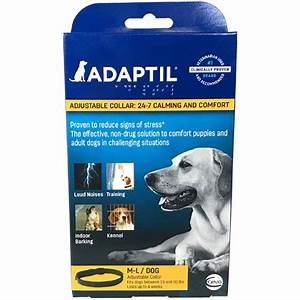 adaptil calming collar and spray anxiety relief for dogs With comfort zone dog collar