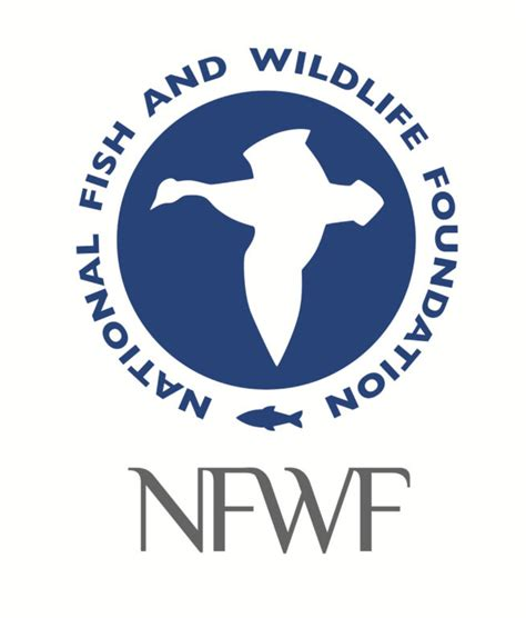 nfwf announces nearly 100 million for new restoration