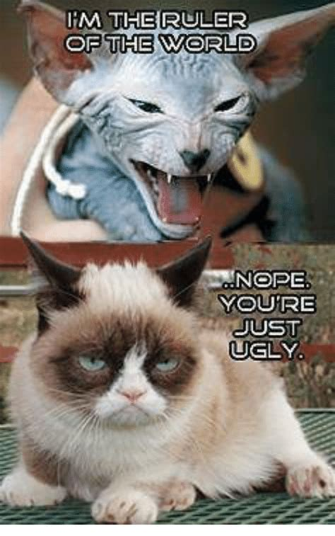 Ugly Cat Meme - m the ruler of the world nope youre just ugly ugly meme on sizzle